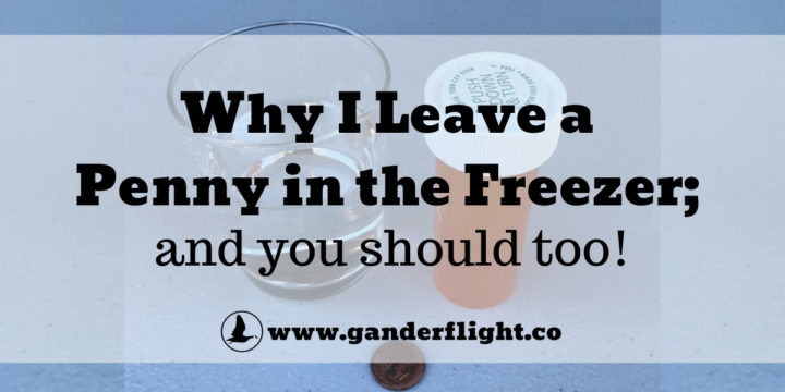 Why I leave a penny in the freezer; and you should too!