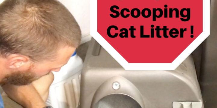 A Better Cat Litter Box: STOP SCOOPING LITTER! | Omega Paw Litter Box Review